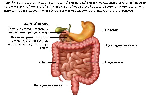 лечение тройчаткой от паразитов схема приема